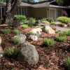water-efficient plants, rocks and mulch in front of a brown house