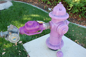 Recycled water hydrant with properly connected meter