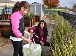 Two fifth-grade girls pick up trash in a tote bag.