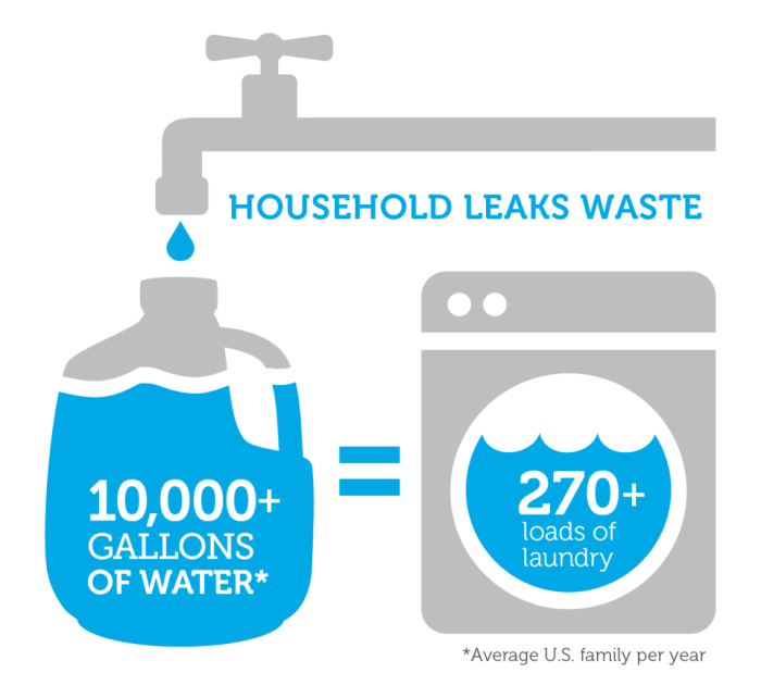 Household Leaks Waste 10K Gallons Annually